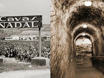 Visita combinada Caves Nadal + CIARGA